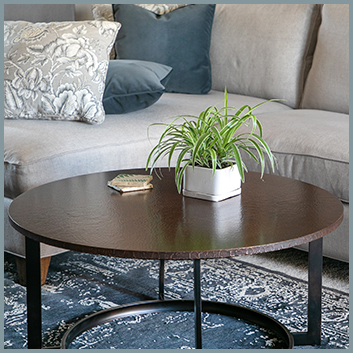 Living Room Table & Rug